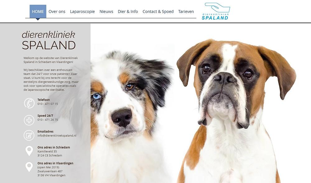 nieuwe website dierenkliniek spaland in schiedam en vlaardingen
