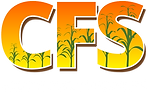 CFS-Logo-Brighter.png