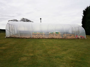 SINGLE SPAN POLYTUNNEL 1.jpg