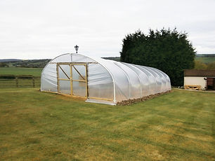 SINGLE SPAN POLYTUNNEL.jpg
