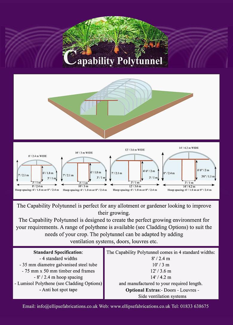 Capability Polytunnel.jpg