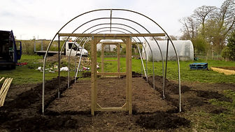 SINGLE POLYTUNNEL 3.jpg
