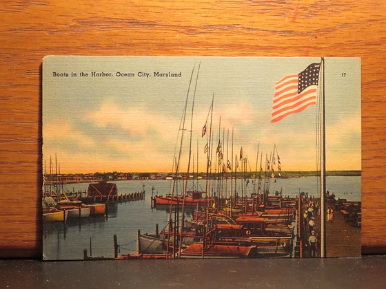Boats in the Harbor, Ocean City, Maryland