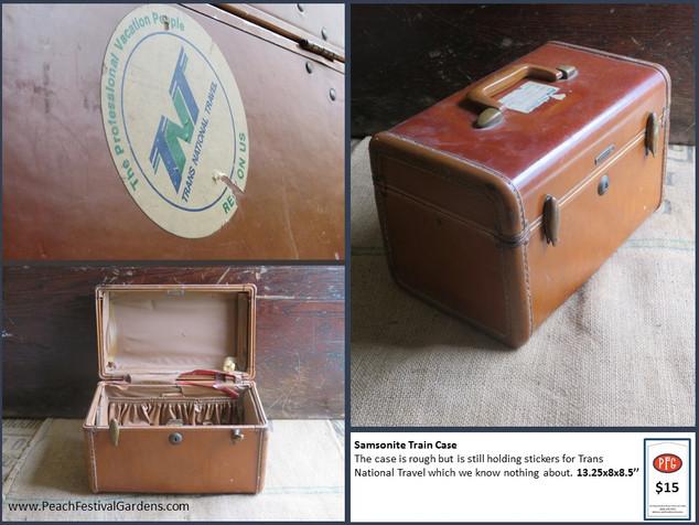 Samsonite Train Case
