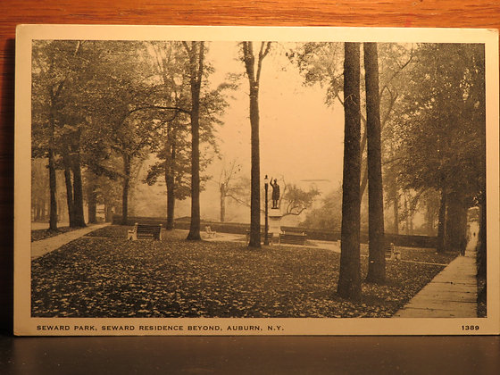 Seward Park, Seward Residence Beyond, Auburn, New York