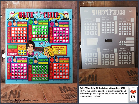 Bally Blue Chip Bingo Backglass