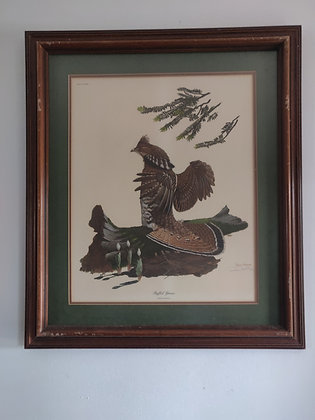 Ruffed Grouse Plate No. XXXIX by Ray Harm