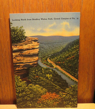 Looking North from Bradley Wales Park, Grand Canyon of Pennsylvania