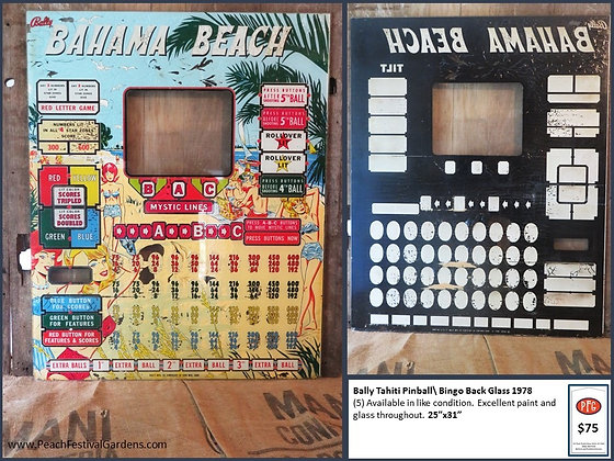 Bally Bahama Beach Bingo Backglass