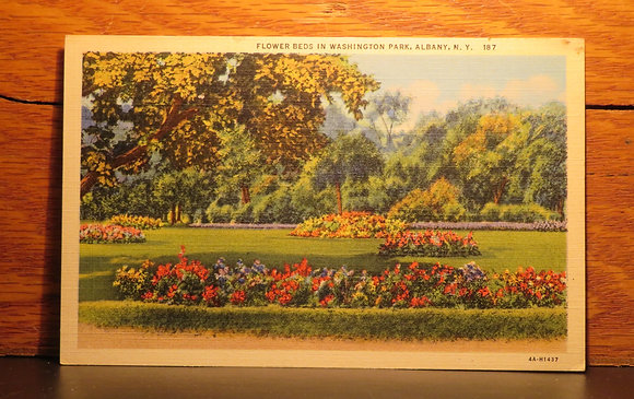 Flower Beds in Washington Park, Albany, New York