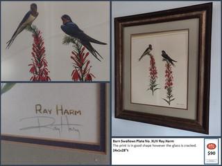 Barn Swallows Plate No. XLIV Ray Harm $90