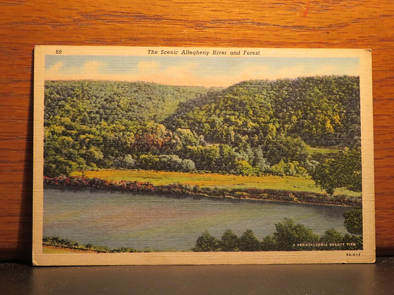 The Scenic Allegheny River and Forest, Pennsylvania