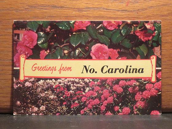 Greetings From North Carolina