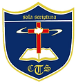 CTS-  LOGO_color.png