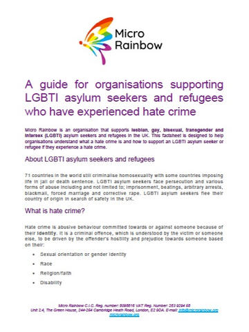 Micro Rainbow: A Guide for Organisations