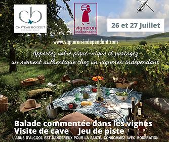 Balade_comentée_dans_les_vignes.png