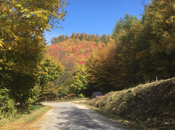 Colourful autumn - Bükk Mountains