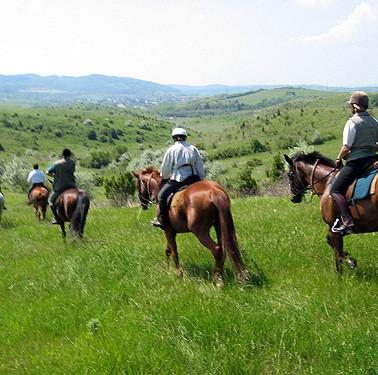 Horseriding2.JPG