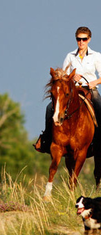 Horseriding3.jpg