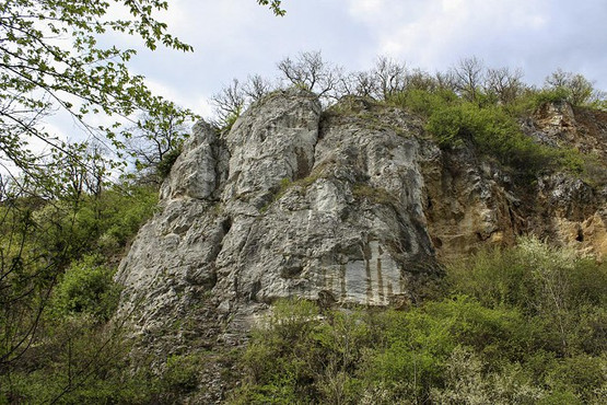 B_Felsőtárkány szikla.jpg