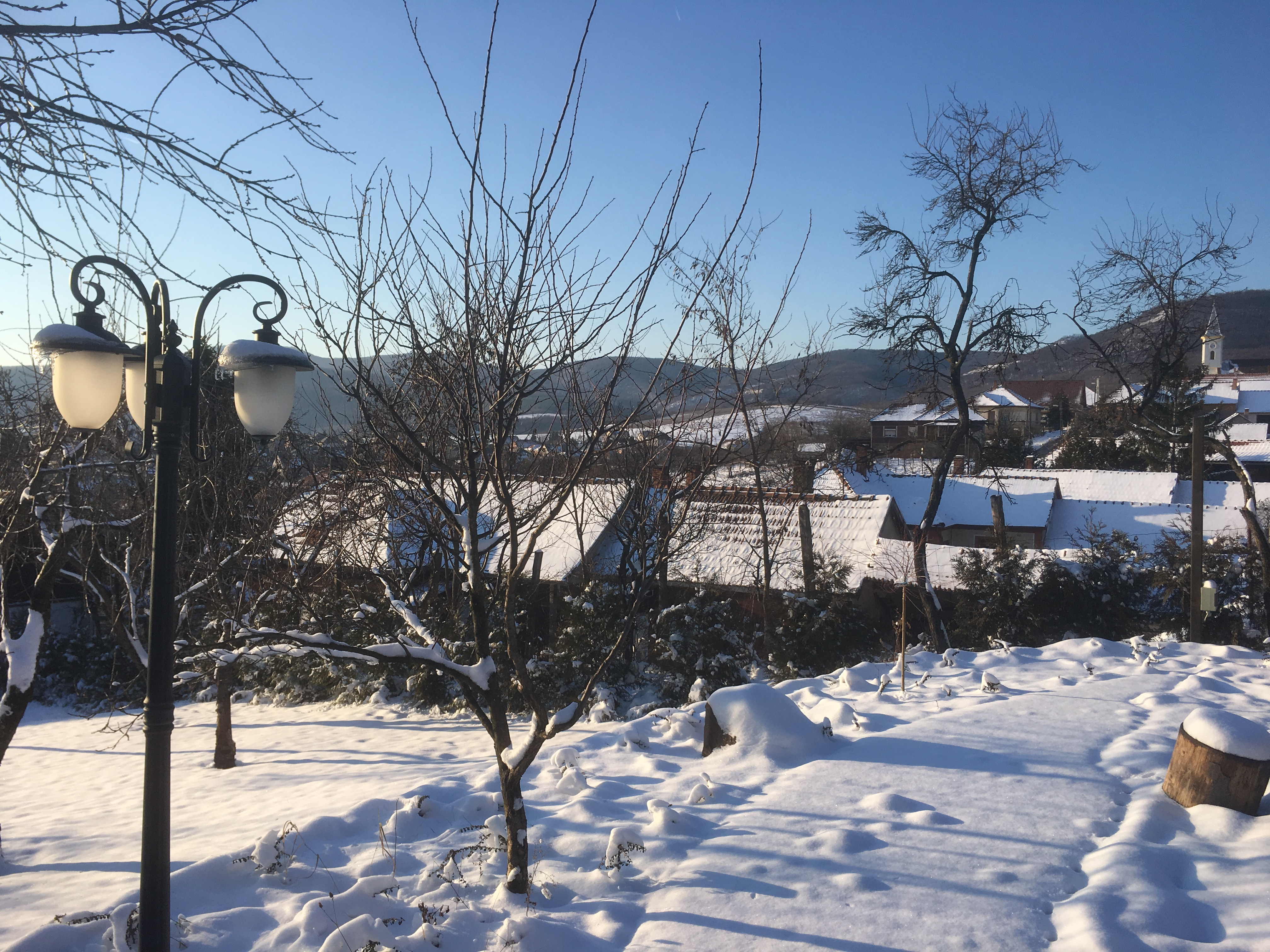 Winter 2017 - Garden