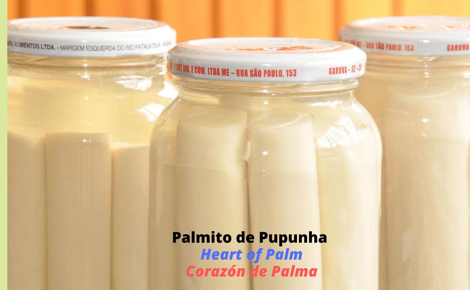 Click_Palmito_Heart_Palm_CorazonPalma