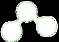 logotipo%20myozone%20branco_edited.png