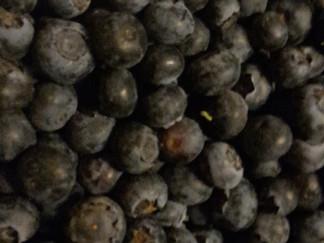 Mustikan vaikutus terveyteemme on merkittävä! / Blåbär har betydande inverkan på vår hälsa!
