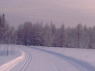 Vuoden 2019 ruokailmiöitä / Matfenomen år 2019