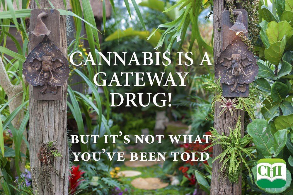 Gateway drugs, Cannabis, Exit Drug, Marijuana, Addiction,