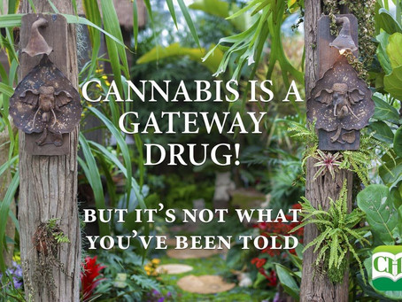 Cannabis is a Gateway Drug! (But it's Not What You've Been Told)