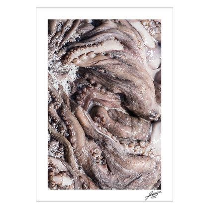 My Octopus Teacher | Enzo Razon