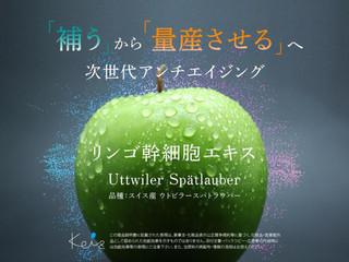 リンゴ幹細胞エキス.jpg