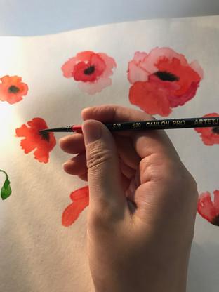 Draw_poppy