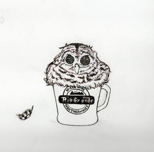 Draw_owl