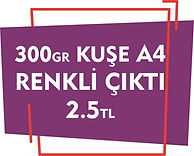 bakırköy renkli fotokopi çıktı