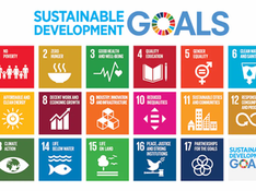 The Green Office officially marked our Community Driven Innovators as contributing to the United Nations Sustainable Development Goals.
