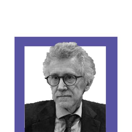 LE POLITICHE DELL'EMERGENZA: INTERVISTA A PIERO IGNAZI