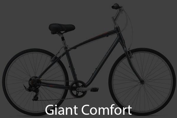 Giant Comfort