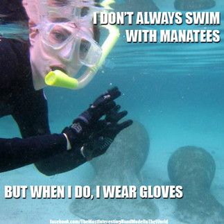 The Most Interesting Hand Model In The World, swimming with the fishies.  Well, swimming with the manatees. :)