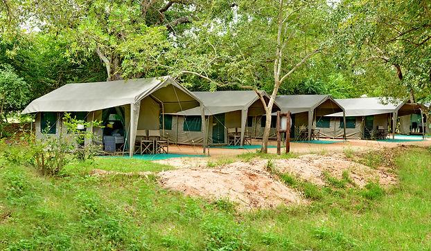 Pretoriouskop Tented camp (3).JPG