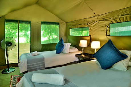 Pretoriouskop Tented camp (10).JPG