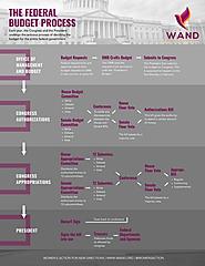 Budget Process - WAND