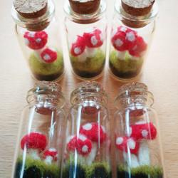 Felt Toadstools in Glass Bottles