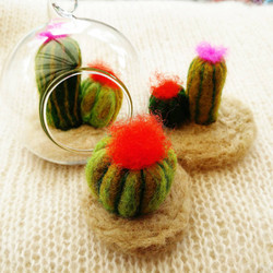 Mini felt cacti and succulents
