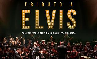 Elvis Cascavel Feed.jpg