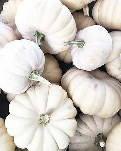 pretty-white-pumpkins.jpg