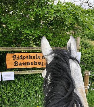Baunehøj Ridecenter_5.jpg
