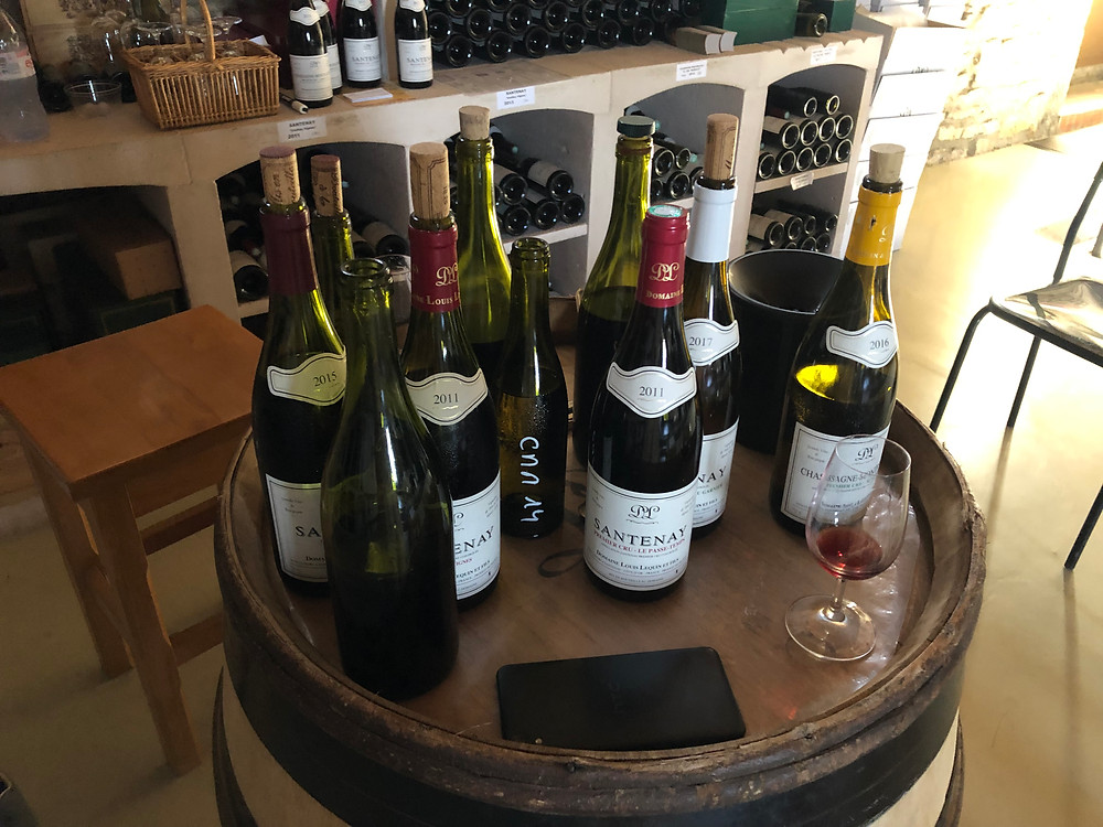 tasting Louis Lequin wines while visiting the domaine in Santenay during my Burgundy wine study trip