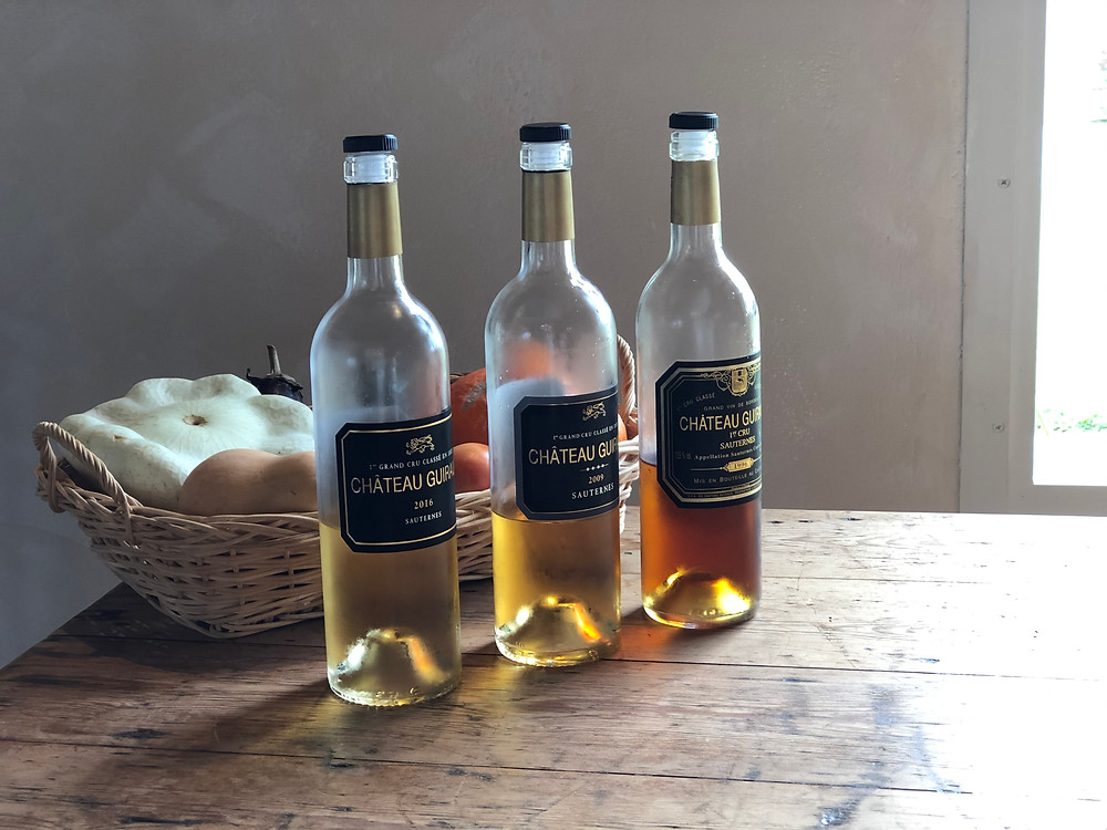 Organic Sauternes wine tasting at Chateau Guiraud in Sauternes during a wine study trip